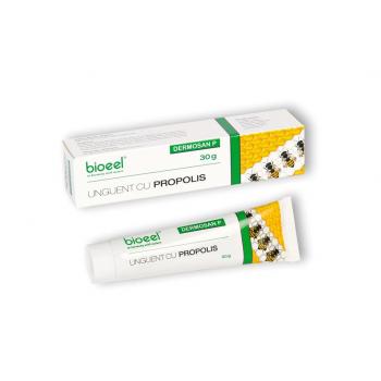 Unguent cu propolis dermosan p 30 ml BIOEEL