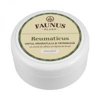 Unguent reumaticus