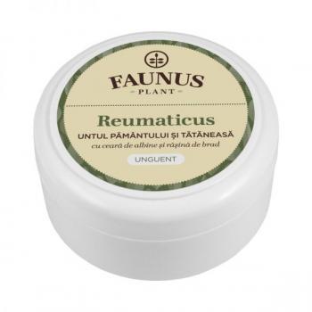 Unguent reumaticus 100 ml FAUNUS PLANT