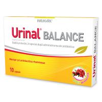 Urinal balance