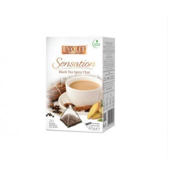 Ceai blak tea spicy chai 20 pl EVOLET