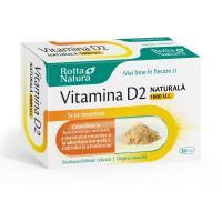 Vitamina d2 1000 ui